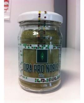 Farinha de Ora Pro Nobis - 80g